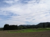 京屋酒造の自社畑1
